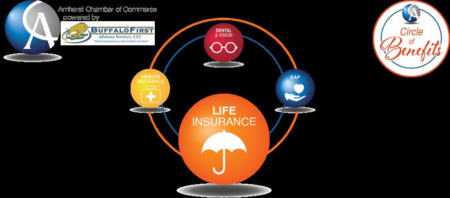ACC Life Insurance Web Header