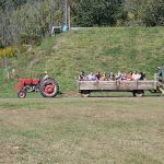 Crowd of people on hayride being pulled by red tractor.
