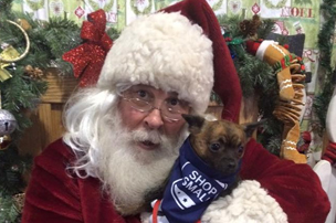 Santa Claus holding brown dog on Small Business Saturday.