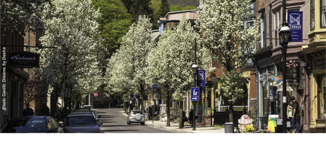 Spring flowers on trees in downtown Jim Thorpe