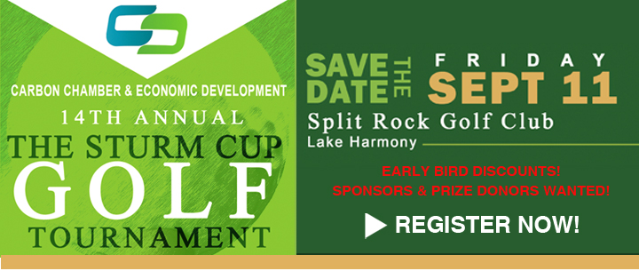 CCEDC 14th Annual Sturm Cup Golf Outing- Sept.11, 2020 banner