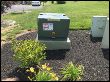 transformer on concrete pad in flower garden
