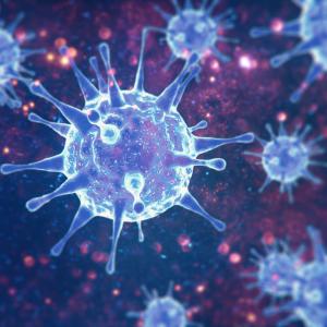 KID Coronavirus Bulletin