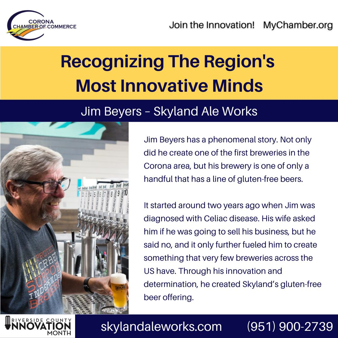 Innovation Month Innovators 3 Skyland