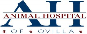 Animal Hosp