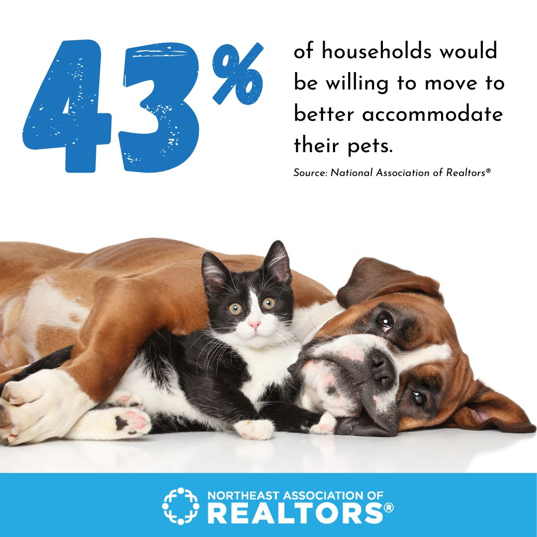 43% households would move to better suit pets with image of cat and dog laying together