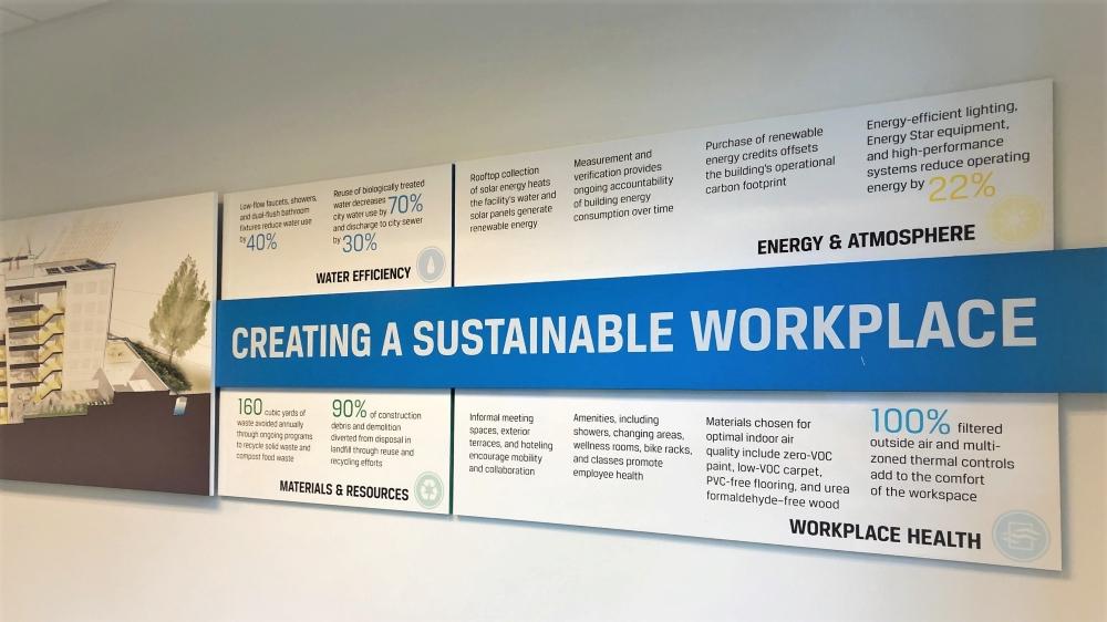 CFA sustainable