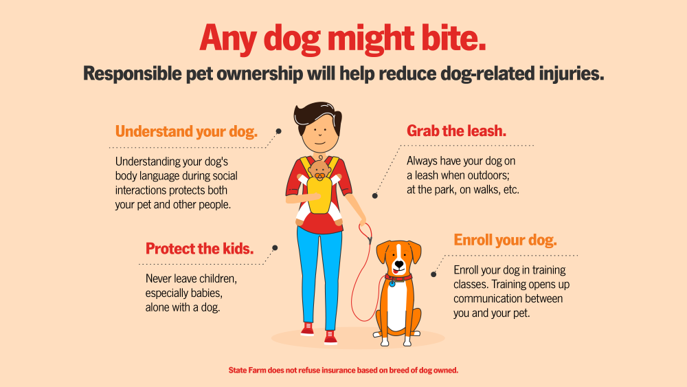 Responsible pet ownership will help reduce dog-related injuries.