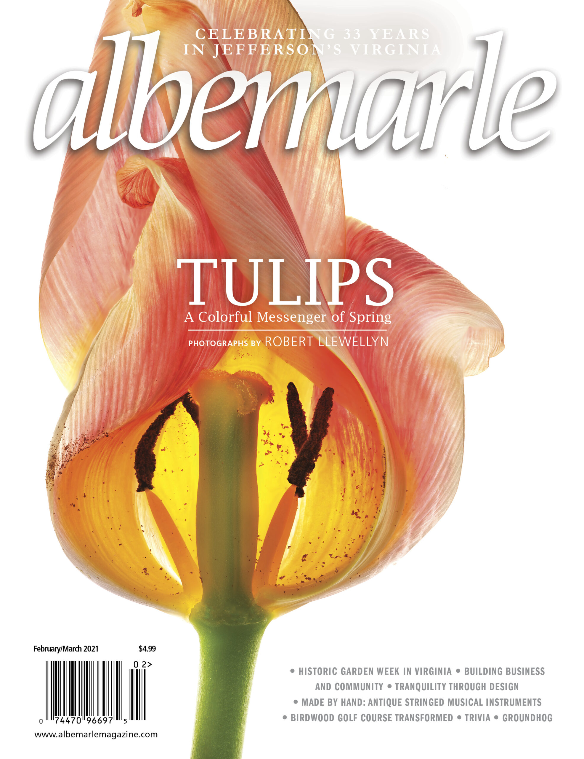albemarle cover feb march 21