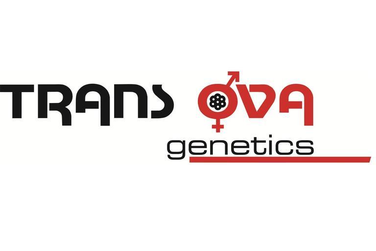 Trans Ova Logo