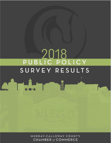 2018-public-policy-survey-results