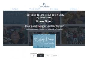 Murray Money Website Screenshot