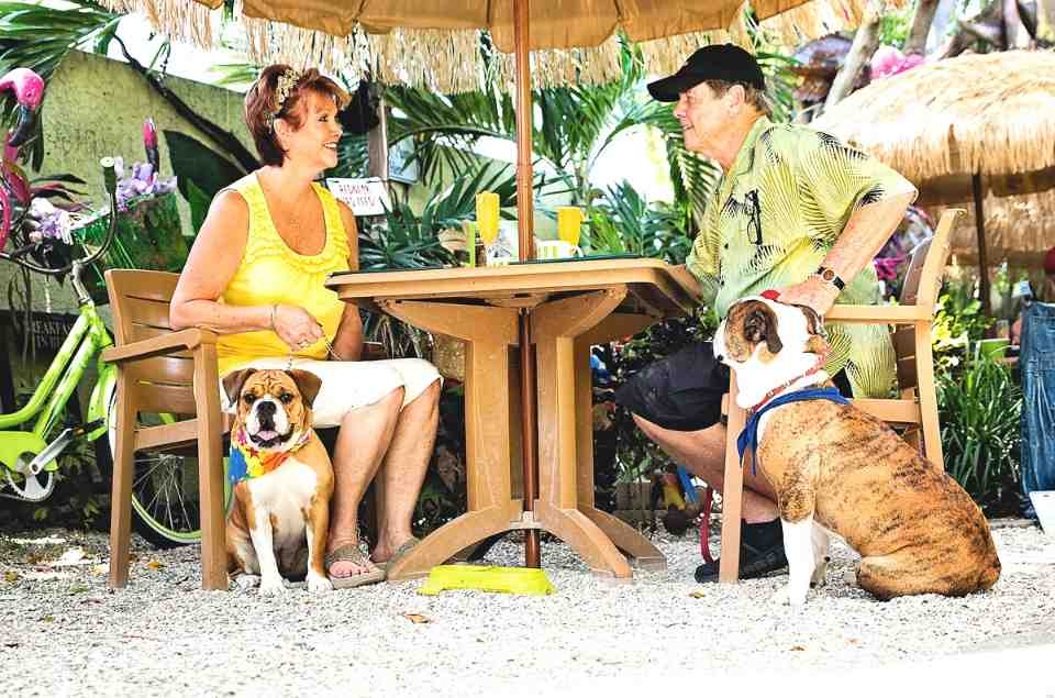 Retired Couple at Pet Friendly Restaurant Sweet Sage Cafe & Boutique - Tampa Bay Beaches