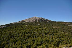 Mount_Monadnock_as_seen_from_Bald_Rock