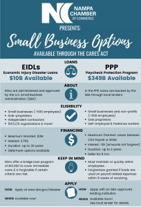 This infographic contains a side-by-side comparison of Economic Injury Disaster Loans (EIDLs) and the Paycheck Protection Program (PPP)