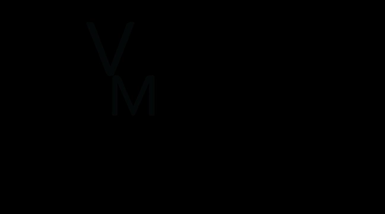 Verstandig logo