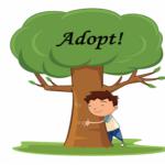 Adopt a tree image