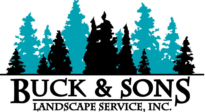 Buck and Sons