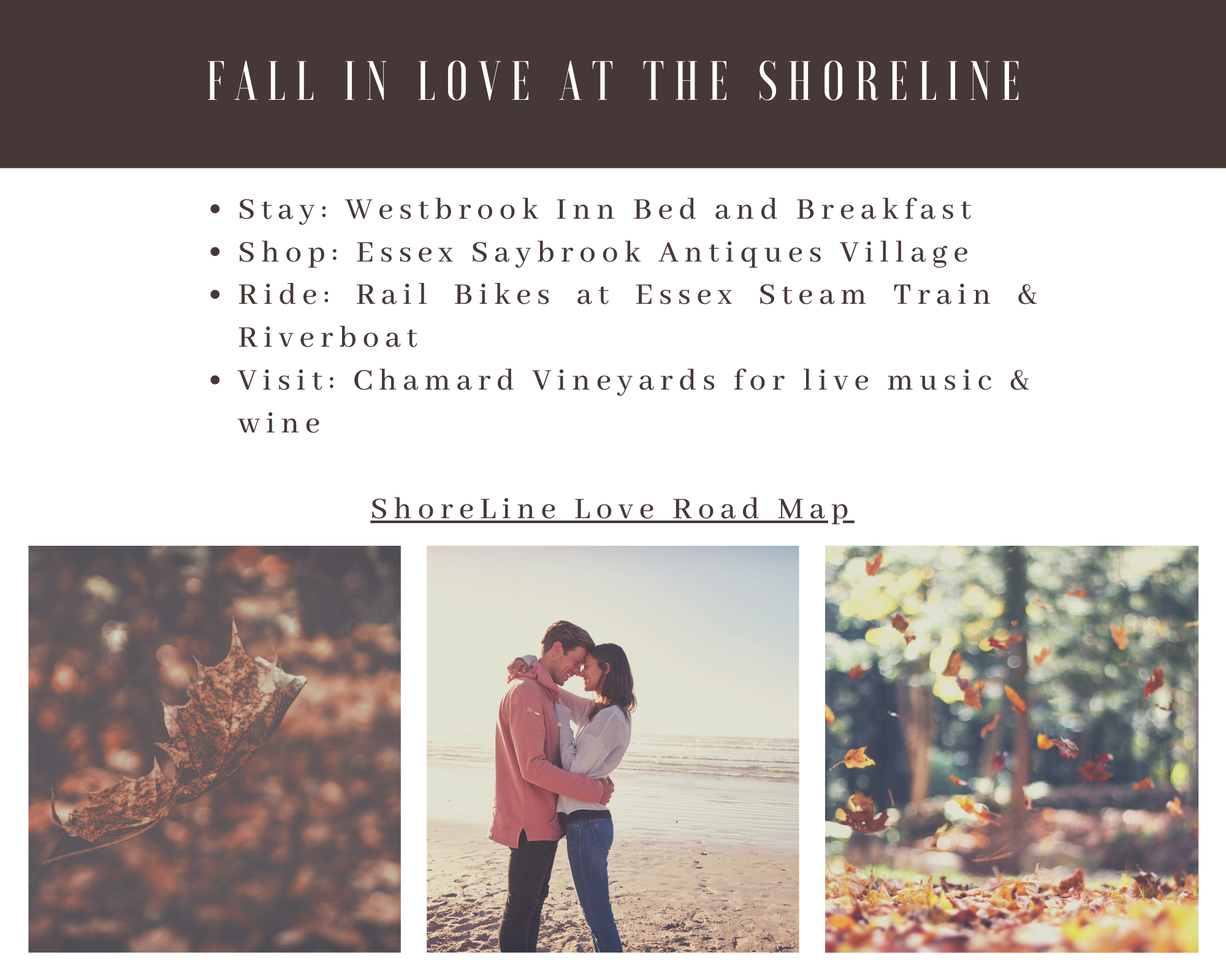 Fall in Love at the Shoreline