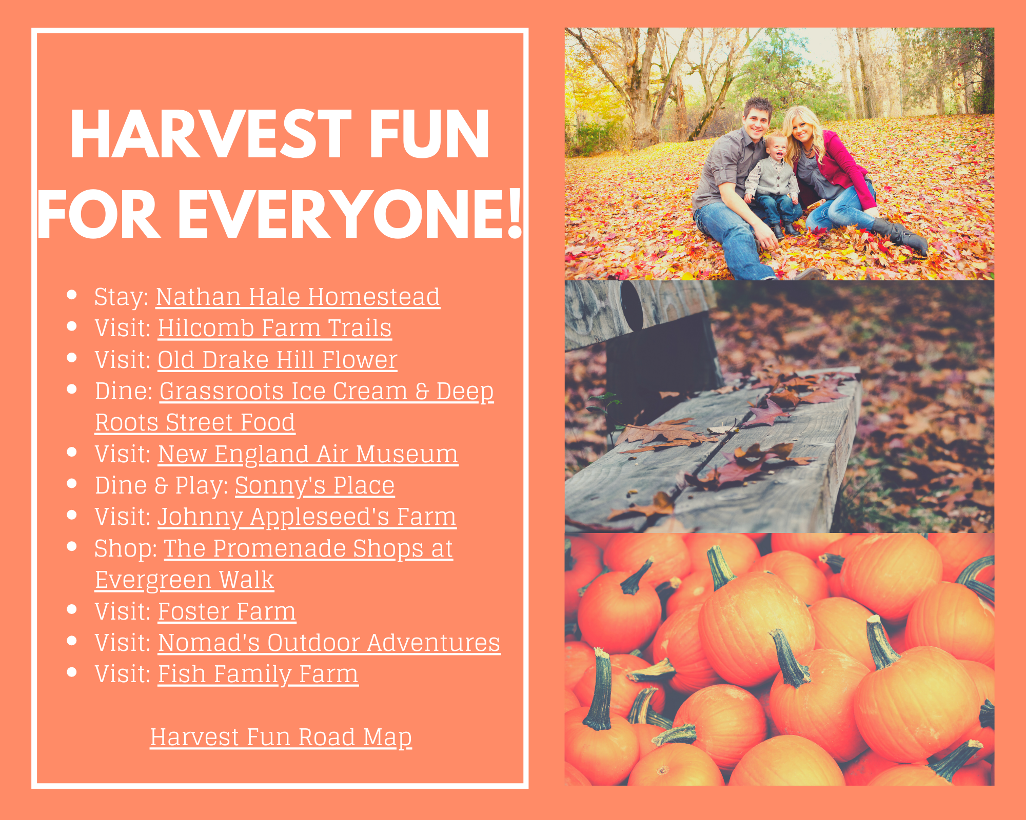 Harvest Fun for Everyone