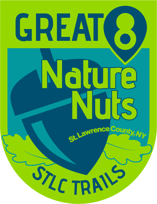 Great-8-Nature-Nuts-Outlined-image_medium