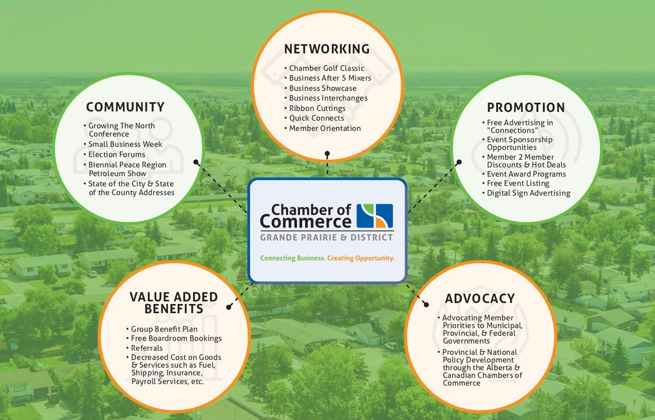 Chamber Benefits Infographic