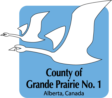 County 2014 Colour Logo