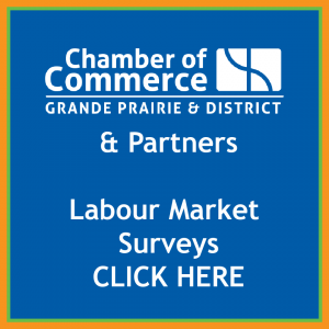 LMNA Chamber front page banner