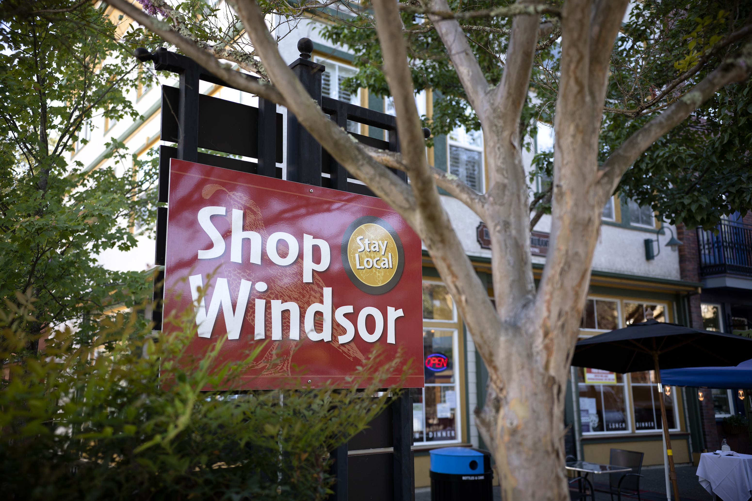 cities_towns_Windsor_by_Dan_Quinones_Sonoma_County_015