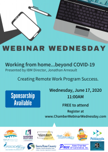 Webinar Wednesday 6.17.20 Flyer