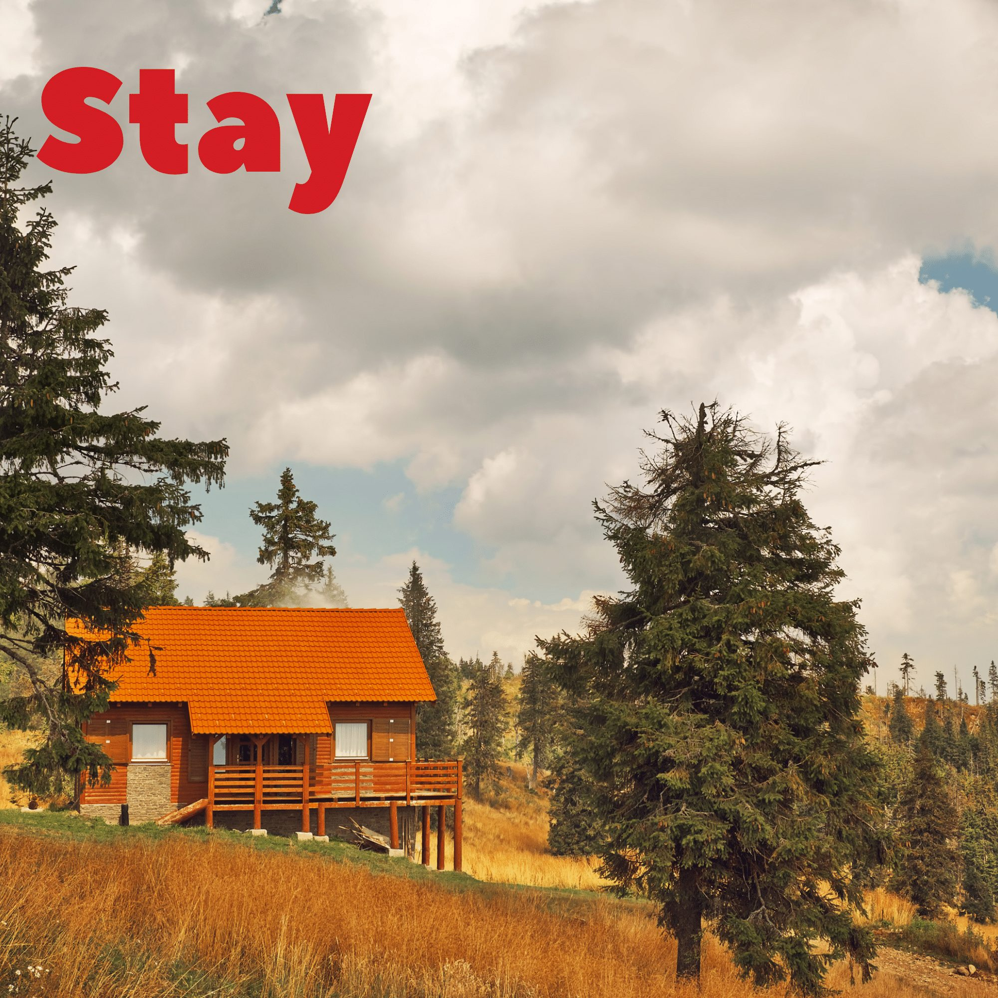 Stay_Summer