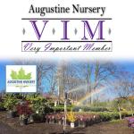 08VIM_AugustineNursery_June2017_gallery