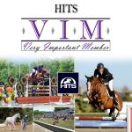 10VIM_HITS_June2017_gallery