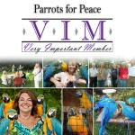 25VIM_ParrotsForPeace_November2018_gallery