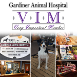 27VIM_GardinerAnimalHospital_December2017_gallery