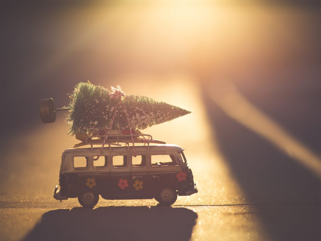 Van with tree on top