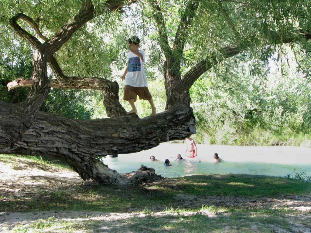 River_-_tree_kids_080730-2