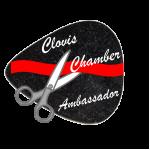 Ambassador Pin Design