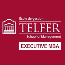 Telefer Executive MBA