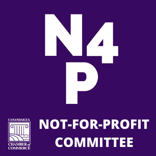 n4p logo
