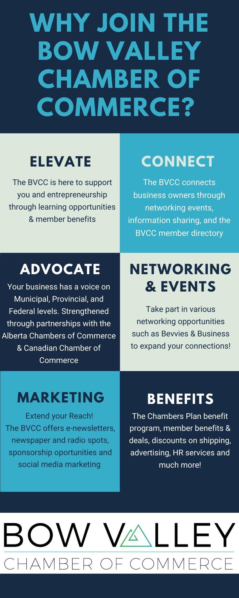 BVCC Infographic