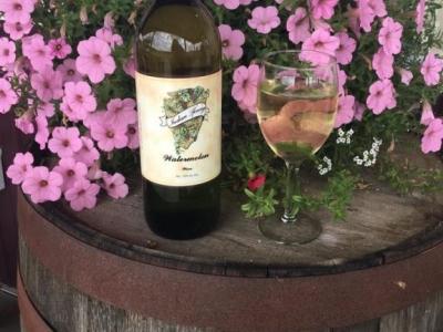 Indian Springs Winery - Sardinia