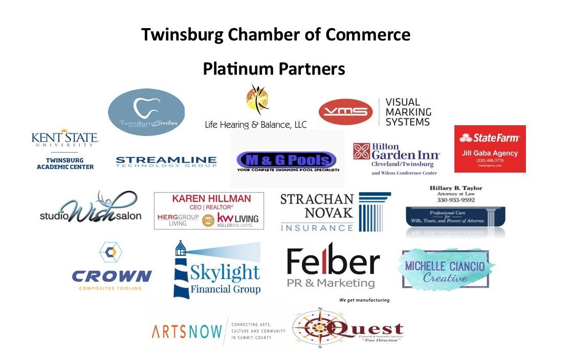 Platinum Partners Logo 2021 updated CM