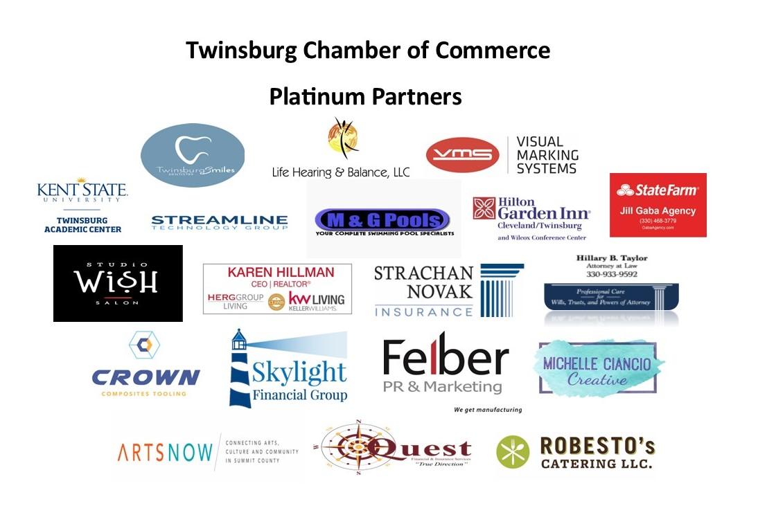 Platinum Partners Logo 2021 updated 6 14 21