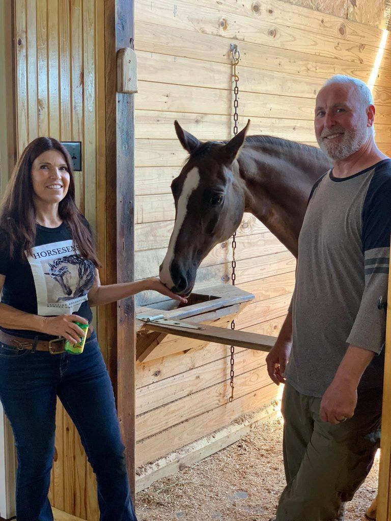 horsesensing4