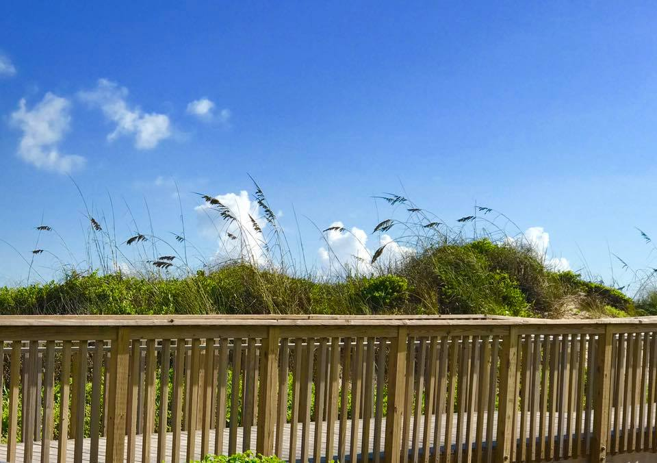boardwalk to beach with grass covered dunes and sky