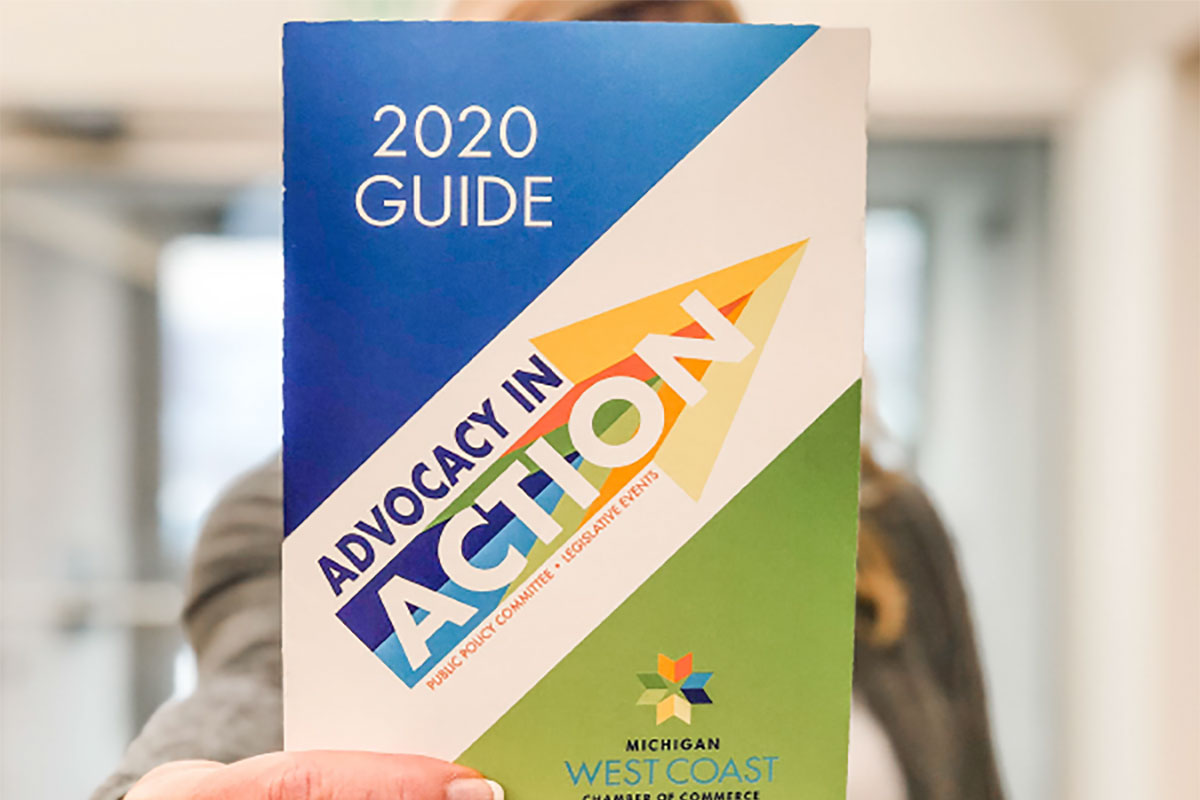 Advocacy In Action Guide Book