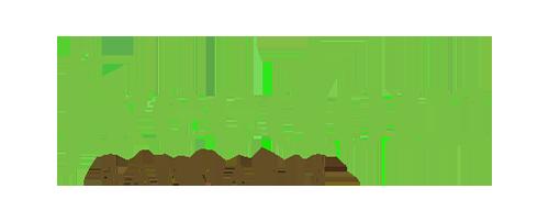Freedom Cannabis Logo