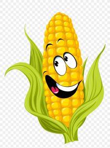corn-on-the-cob-drawing-sweet-corn-clip-art-png-favpng-yK7jZUwtebSGxuaWjs3y2EVz1