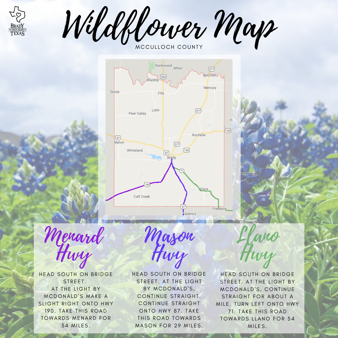 Wildflower Map